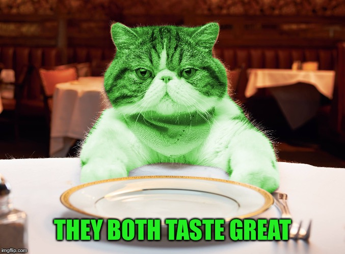 RayCat Hungry | THEY BOTH TASTE GREAT | image tagged in raycat hungry | made w/ Imgflip meme maker