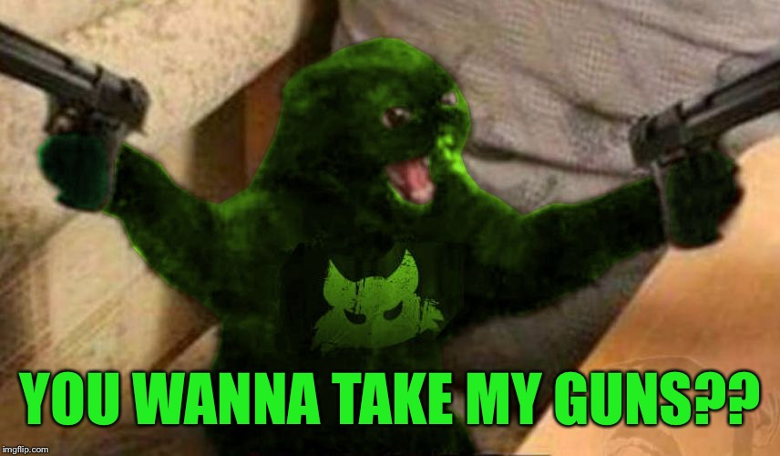 RayCat Angry | YOU WANNA TAKE MY GUNS?? | image tagged in raycat angry | made w/ Imgflip meme maker