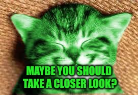 happy RayCat | MAYBE YOU SHOULD TAKE A CLOSER LOOK? | image tagged in happy raycat | made w/ Imgflip meme maker