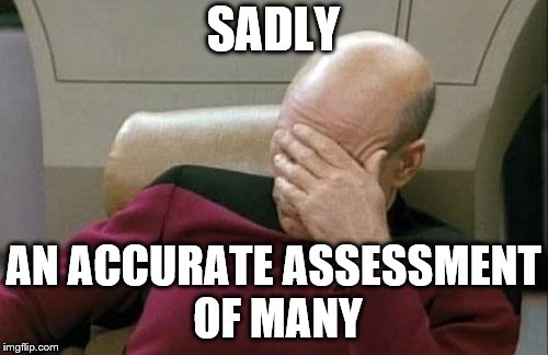 Captain Picard Facepalm Meme | SADLY AN ACCURATE ASSESSMENT OF MANY | image tagged in memes,captain picard facepalm | made w/ Imgflip meme maker