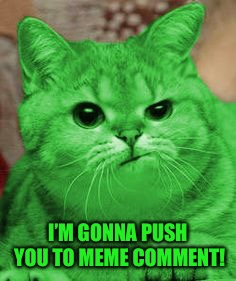 RayCat Annoyed | I'M GONNA PUSH YOU TO MEME COMMENT! | image tagged in raycat annoyed | made w/ Imgflip meme maker