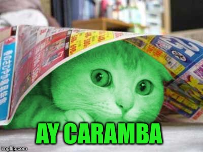 RayCat Scared | AY CARAMBA | image tagged in raycat scared | made w/ Imgflip meme maker