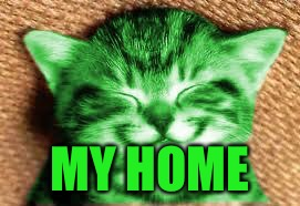 happy RayCat | MY HOME | image tagged in happy raycat | made w/ Imgflip meme maker