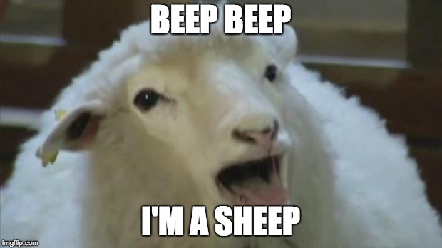 derp sheep | BEEP BEEP I'M A SHEEP | image tagged in derp sheep,memes | made w/ Imgflip meme maker