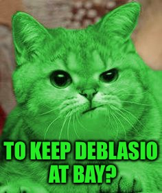 RayCat Annoyed | TO KEEP DEBLASIO AT BAY? | image tagged in raycat annoyed | made w/ Imgflip meme maker