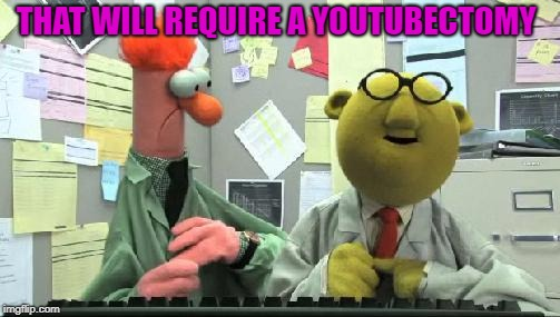 muppets  | THAT WILL REQUIRE A YOUTUBECTOMY | image tagged in muppets | made w/ Imgflip meme maker