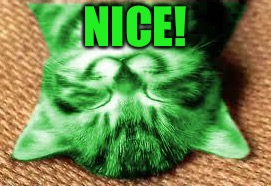 happy RayCat | NICE! | image tagged in happy raycat | made w/ Imgflip meme maker
