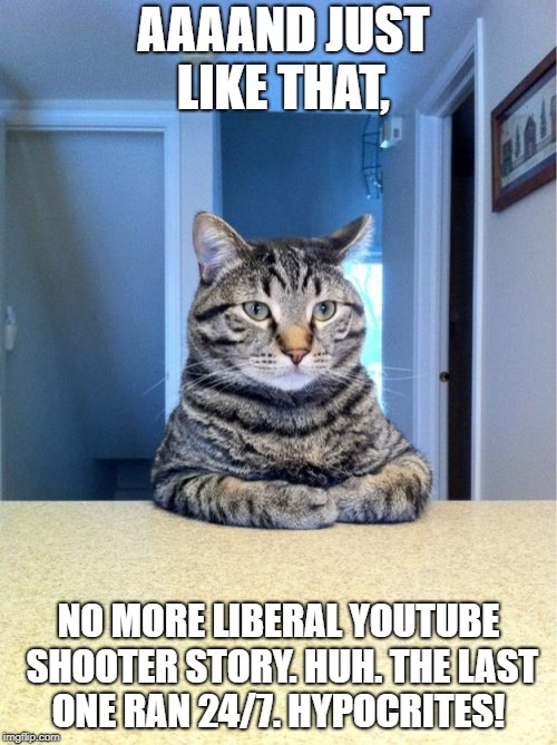 Take A Seat Cat Meme | AAAAND JUST LIKE THAT, NO MORE LIBERAL YOUTUBE SHOOTER STORY. HUH. THE LAST ONE RAN 24/7. HYPOCRITES! | image tagged in memes,take a seat cat | made w/ Imgflip meme maker
