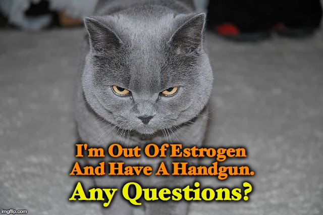 Bad Day | I'm Out Of Estrogen And Have A Handgun. Any Questions? | image tagged in very bad day | made w/ Imgflip meme maker