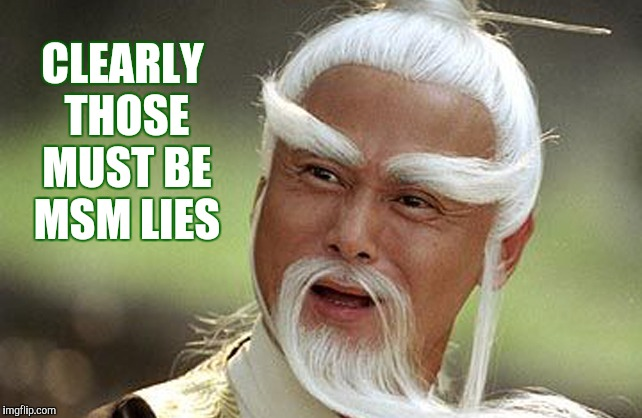 Wise Man Is Impressed | CLEARLY THOSE MUST BE MSM LIES | image tagged in wise man is impressed | made w/ Imgflip meme maker