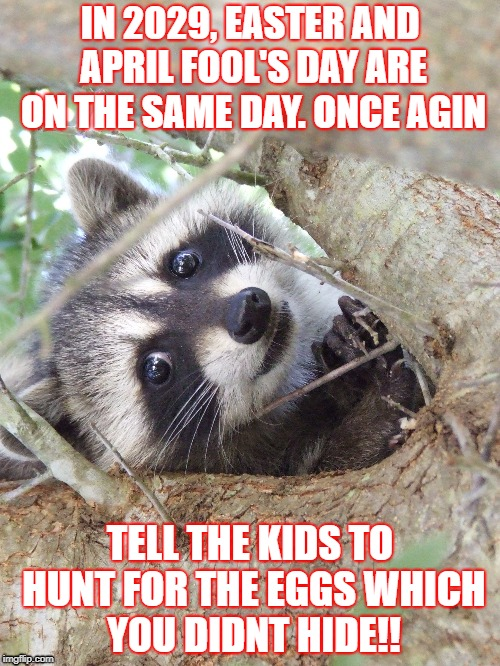 Easter is coming | IN 2029, EASTER AND APRIL FOOL'S DAY ARE ON THE SAME DAY. ONCE AGIN TELL THE KIDS TO HUNT FOR THE EGGS WHICH YOU DIDNT HIDE!! | image tagged in racoon,easter,future | made w/ Imgflip meme maker