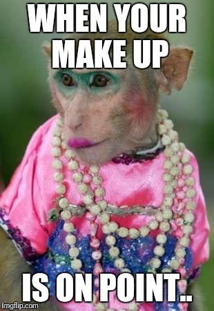 WHEN YOUR MAKE UP IS ON POINT.. | image tagged in monkey make up | made w/ Imgflip meme maker