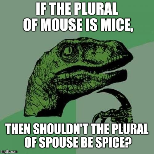 Philosoraptor Meme | IF THE PLURAL OF MOUSE IS MICE, THEN SHOULDN'T THE PLURAL OF SPOUSE BE SPICE? | image tagged in memes,philosoraptor,funny,think about it | made w/ Imgflip meme maker