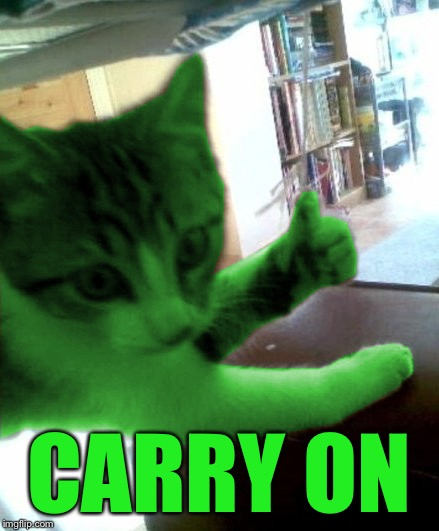 thumbs up RayCat | CARRY ON | image tagged in thumbs up raycat | made w/ Imgflip meme maker