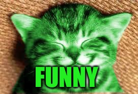 happy RayCat | FUNNY | image tagged in happy raycat | made w/ Imgflip meme maker