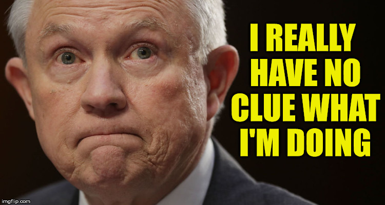 Spineless Jeff Sessions | I REALLY HAVE NO CLUE WHAT I'M DOING | image tagged in jeff sessions,memes,clueless,first world problems | made w/ Imgflip meme maker