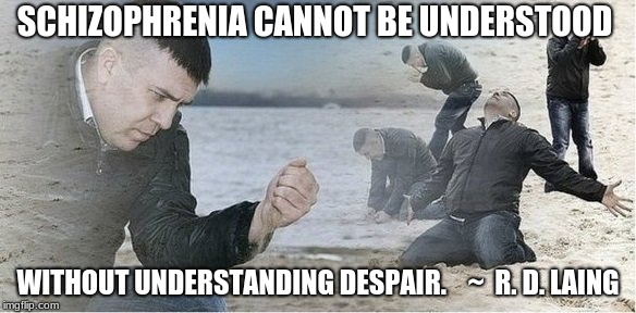 SCHIZOPHRENIA CANNOT BE UNDERSTOOD WITHOUT UNDERSTANDING DESPAIR.    ~  R. D. LAING | image tagged in despair | made w/ Imgflip meme maker