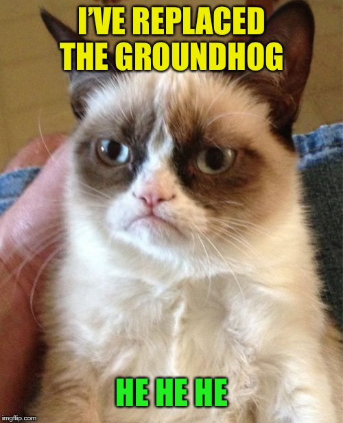 Waiting for Spring?  Tough! | I'VE REPLACED THE GROUNDHOG HE HE HE | image tagged in memes,grumpy cat,groundhog day,cold weather | made w/ Imgflip meme maker