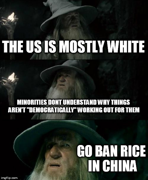 "Confused Gandalf Meme | THE US IS MOSTLY WHITE MINORITIES DONT UNDERSTAND WHY THINGS AREN'T ""DEMOCRATICALLY"" WORKING OUT FOR THEM GO BAN RICE IN CHINA 