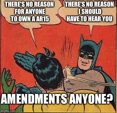 Batman Slapping Robin Meme | THERE'S NO REASON FOR ANYONE TO OWN A AR15 THERE'S NO REASON I SHOULD HAVE TO HEAR YOU AMENDMENTS ANYONE? | image tagged in memes,batman slapping robin | made w/ Imgflip meme maker