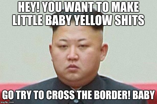 HEY! YOU WANT TO MAKE LITTLE BABY YELLOW SHITS GO TRY TO CROSS THE BORDER! BABY | image tagged in north korean leader | made w/ Imgflip meme maker