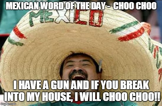 mexican word of the day | MEXICAN WORD OF THE DAY -  CHOO CHOO I HAVE A GUN AND IF YOU BREAK INTO MY HOUSE, I WILL CHOO CHOO!! | image tagged in mexican word of the day | made w/ Imgflip meme maker
