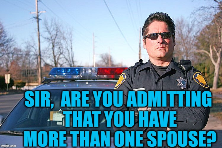 police | SIR,  ARE YOU ADMITTING THAT YOU HAVE MORE THAN ONE SPOUSE? | image tagged in police | made w/ Imgflip meme maker