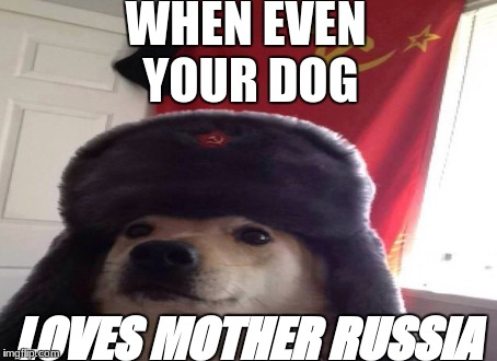 Russian doggo | WHEN EVEN YOUR DOG LOVES MOTHER RUSSIA | image tagged in russia,russian doge | made w/ Imgflip meme maker