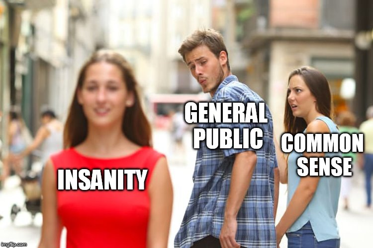 Distracted Boyfriend Meme | INSANITY GENERAL PUBLIC COMMON SENSE | image tagged in memes,distracted boyfriend | made w/ Imgflip meme maker