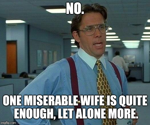 That Would Be Great Meme | NO. ONE MISERABLE WIFE IS QUITE ENOUGH, LET ALONE MORE. | image tagged in memes,that would be great | made w/ Imgflip meme maker
