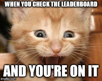 Just reached 249th place! | WHEN YOU CHECK THE LEADERBOARD AND YOU'RE ON IT | image tagged in memes,excited cat | made w/ Imgflip meme maker