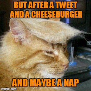 BUT AFTER A TWEET AND A CHEESEBURGER AND MAYBE A NAP | made w/ Imgflip meme maker