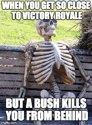 Waiting Skeleton Meme | WHEN YOU GET SO CLOSE TO VICTORY ROYALE BUT A BUSH KILLS YOU FROM BEHIND | image tagged in memes,waiting skeleton | made w/ Imgflip meme maker