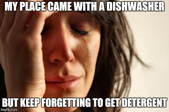 First World Problems Meme | MY PLACE CAME WITH A DISHWASHER BUT KEEP FORGETTING TO GET DETERGENT | image tagged in memes,first world problems | made w/ Imgflip meme maker
