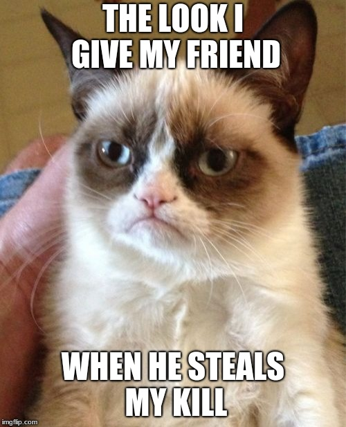 Grumpy Cat Meme | THE LOOK I GIVE MY FRIEND WHEN HE STEALS MY KILL | image tagged in memes,grumpy cat | made w/ Imgflip meme maker