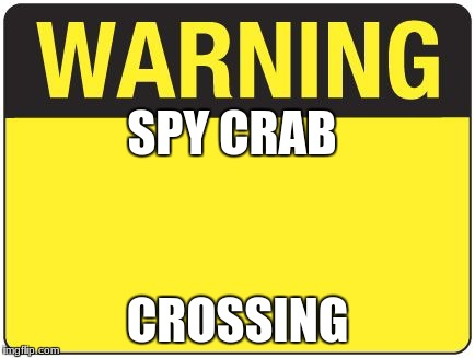 road sign |  SPY CRAB; CROSSING | image tagged in road sign | made w/ Imgflip meme maker