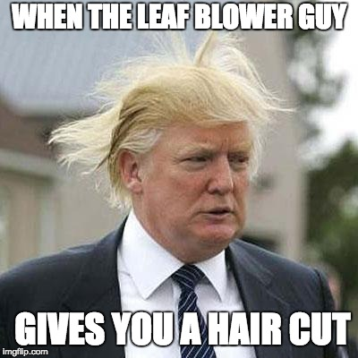 Donald Trump | WHEN THE LEAF BLOWER GUY GIVES YOU A HAIR CUT | image tagged in donald trump | made w/ Imgflip meme maker