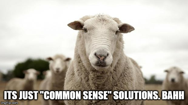 "Bahhh | ITS JUST ""COMMON SENSE"" SOLUTIONS. BAHH 