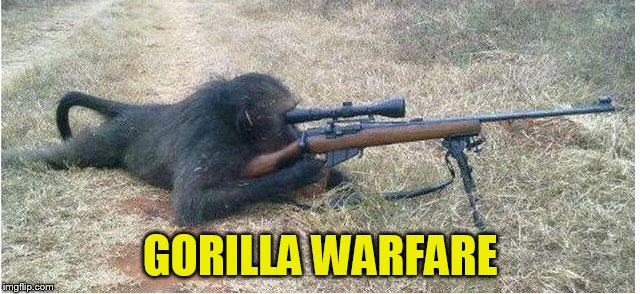 GORILLA WARFARE | made w/ Imgflip meme maker