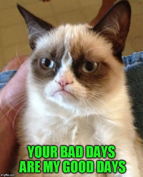 Grumpy Cat Meme | YOUR BAD DAYS ARE MY GOOD DAYS | image tagged in memes,grumpy cat | made w/ Imgflip meme maker