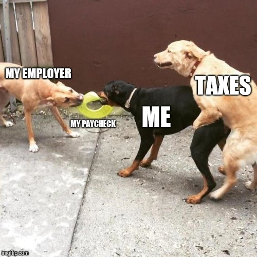 This Is My Life | MY EMPLOYER MY PAYCHECK ME TAXES | image tagged in this is my life | made w/ Imgflip meme maker