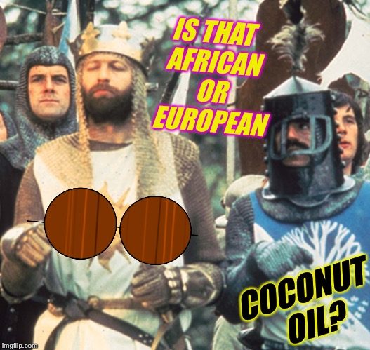 IS THAT AFRICAN OR EUROPEAN COCONUT OIL? | made w/ Imgflip meme maker