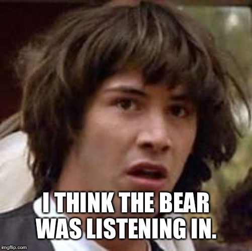 I THINK THE BEAR WAS LISTENING IN. | made w/ Imgflip meme maker