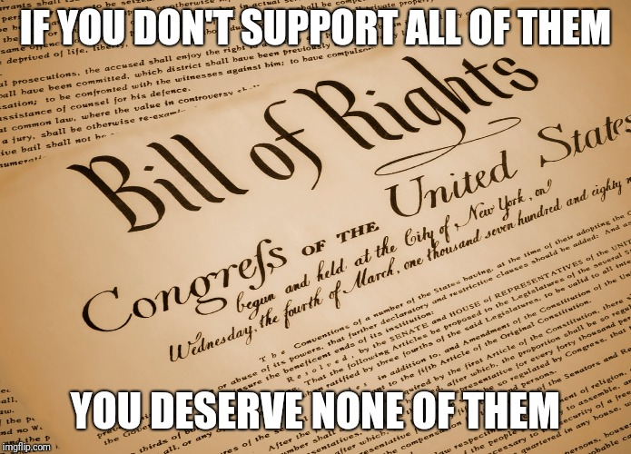 Bill of rights  |  IF YOU DON'T SUPPORT ALL OF THEM; YOU DESERVE NONE OF THEM | image tagged in constitution,bill of rights,government,libtards | made w/ Imgflip meme maker