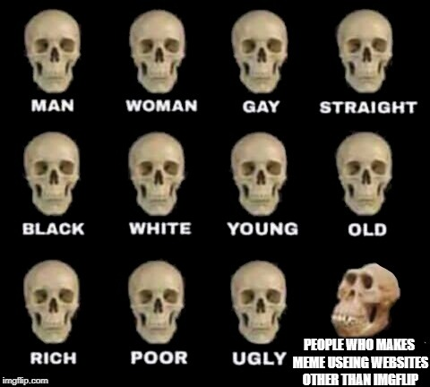 idiot skull | PEOPLE WHO MAKES MEME USEING WEBSITES OTHER THAN IMGFLIP | image tagged in idiot skull | made w/ Imgflip meme maker