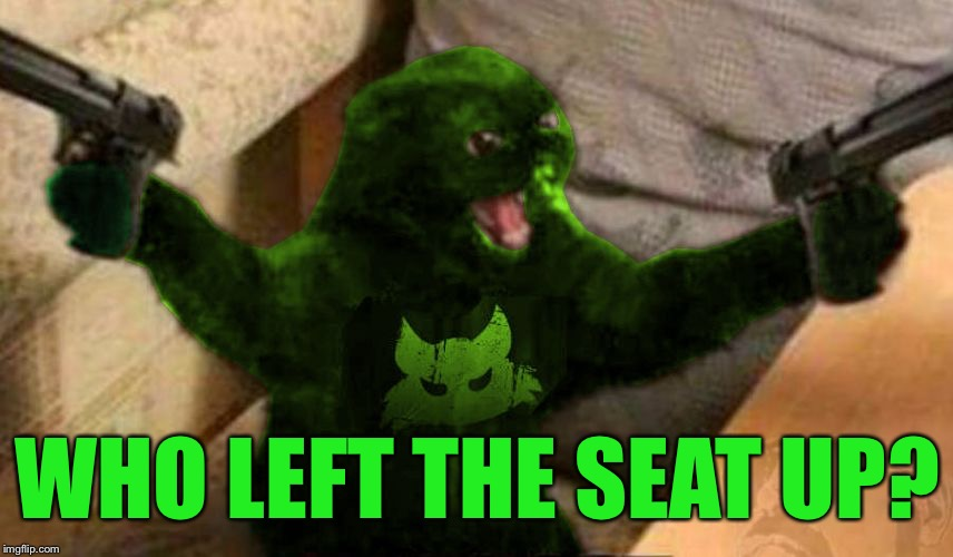 RayCat Angry | WHO LEFT THE SEAT UP? | image tagged in raycat angry | made w/ Imgflip meme maker