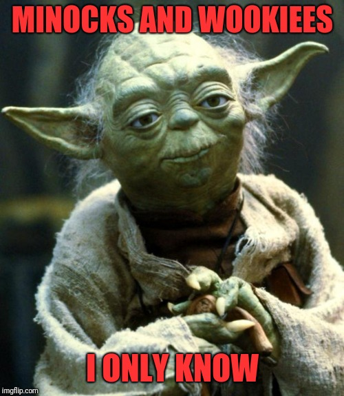 Star Wars Yoda Meme | MINOCKS AND WOOKIEES I ONLY KNOW | image tagged in memes,star wars yoda | made w/ Imgflip meme maker