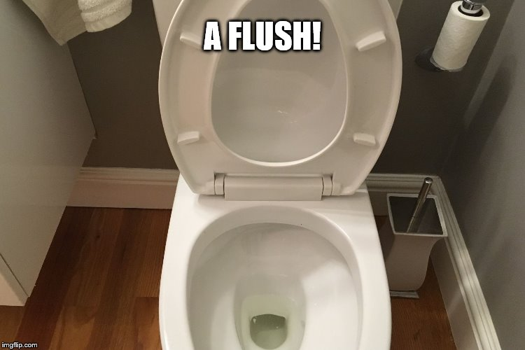 A FLUSH! | made w/ Imgflip meme maker