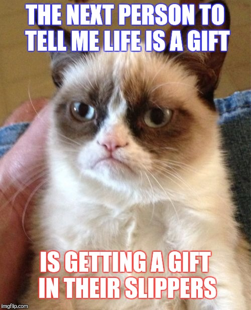 Grumpy Cat Meme | THE NEXT PERSON TO TELL ME LIFE IS A GIFT IS GETTING A GIFT IN THEIR SLIPPERS | image tagged in memes,grumpy cat | made w/ Imgflip meme maker