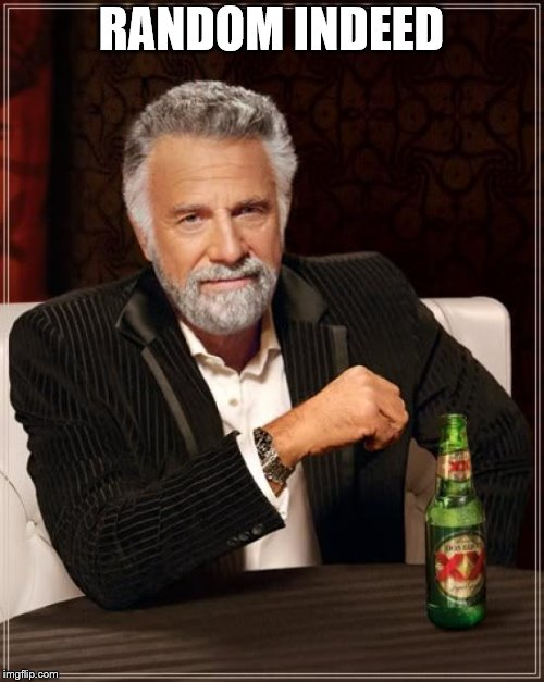 The Most Interesting Man In The World Meme | RANDOM INDEED | image tagged in memes,the most interesting man in the world | made w/ Imgflip meme maker